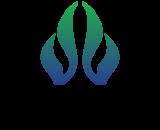 Fifth Element Logo